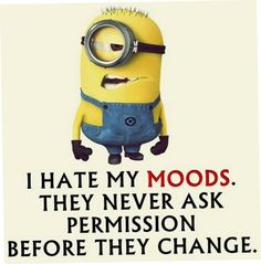 68 ideas funny memes sarcastic humor jokes lol minions quotes for 2019 Funny Minion Pictures, Funny Minion Memes, Minions Quotes, Minion Humor, Funny Humor, Funny Pics, Minion Sayings, Sarcastic Humor, Memes Humor