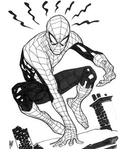 Spider-Man by Adam Hughes!