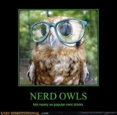 Nerds rule! even owl nerds.