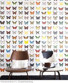 Overal vlinders op het behang
