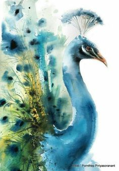 Art Watercolor, Watercolor Illustration, Watercolor Landscape, Watercolor Flowers, Watercolor Background, Watercolor Peacock, Peacock Painting, Peacock Art, Watercolor Sunflower