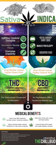Your global source for the latest marijuana news in Along with the Best CBD products, and a up to date watch on weed legalization. Medical Cannabis, Cannabis Oil, Indica Strains, Ganja, Weed Types, Types Of Weeds, Cannabis Growing, Medical Marijuana, Workout Routines