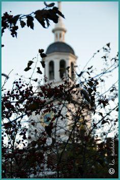I luoghi di Philadelphia che mi sono rimasti nel cuore - My Philadelphia favourite places #lapatataingiacchetta