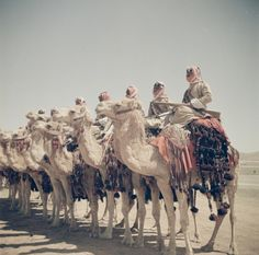 In the land where the ocean meets the desert-Old Arabia
