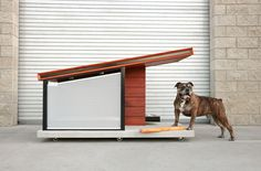 DOG HAUS OUTDOOR 3.jpg