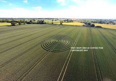 CROP CIRCLE -  Wiltshire, UK Reported 9th June 2015