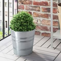 SOCKER in/outdoor galvanised, galvanised, Plant pot, Height: 24 cm - IKEA Indoor Plant Pots, Outdoor Plants, Indoor Outdoor, Ikea Socker, Flower Pot Design, Recycling Facility, Outdoor Garden Furniture, Exotic Plants, Types Of Flowers