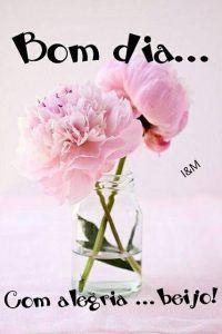 Imagens De Bom Dia Carinhoso Imagens De Bom Dia Flowers