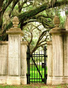 Gate. And oh the southern trees