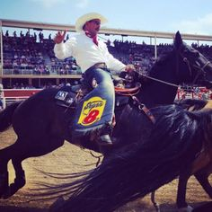 The 2016 Calgary Stampede Is On!