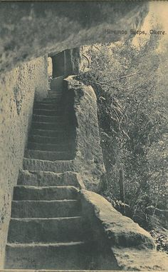 "Hinemoa's Steps as photographed by R. Marsh and sold as postcard in a booklet titled ""A Souvenir of Lake Trip Rotorua"" A copy of this booklet is available to view at the Rotorua District Library, Don Stafford Collection. Booklet, Spaces, Travel, Collection, Souvenir, Viajes, Trips, Traveling, Tourism"