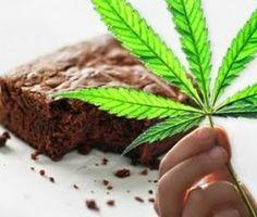 Diário da Erva: Brownies de maconha, para relaxar!