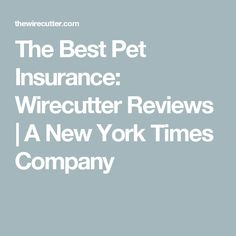 The Best Pet Insurance: Wirecutter Reviews | A New York Times Company