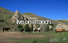 Before I Die. I will live on a ranch.