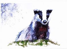 Badger, A4 Print of an Original Watercolour Painting by Be Coventry