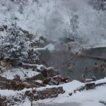 These hot spring pools are fun during the summertime but if you really want the full experience you gotta check them out when it's cold outside....