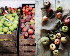 Pratos e Travessas * Recipes, photography and stories