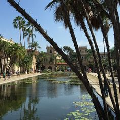 Peaceful Place  #Nature #Inspiration #BalboaPark #SanDiego #California #Travel #BeInspired #LeiLeeJewels #NoFilter