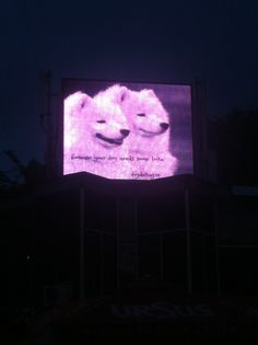 #outdoor #advert Neon Signs, Photos, Outdoor, Outdoors, Pictures, Outdoor Games, The Great Outdoors