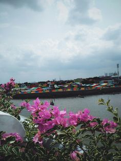 Colourfull village #flowers #sea