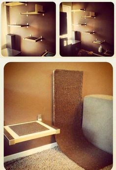 Simple DIY Bed for Cats.Gotta start batting my eyes for baby to do it Shelter Dogs, Animal Shelter, Animal Rescue, Diy Cat Tree, Cat Shelves, Ikea Shelves, Cat Beds, Pet Furniture, Cat Wall