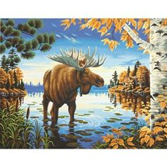 Dimensions Crafts Paintworks Paint by Numbers Kit, Majestic Moose