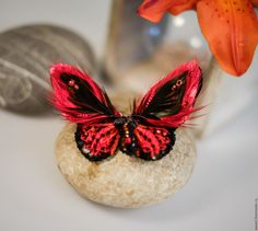 Купить Nemesis - черный, красный, бордовый, белый, слоновая кость, бабочка, мотылек, эксклюзивная вышивка
