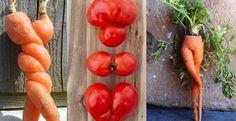 TOP10 de frutas y verduras muy raras que se nos han cruzado en el camino. La madre Naturaleza nunca dejará de sorprendernos!