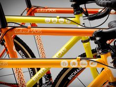All the Flavors of the Richard Sachs Cyclocross Team by House Industries