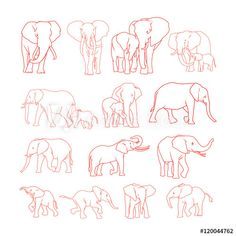 Elephant outline - Buy this stock vector and explore similar vectors at Adobe Stock - You are in the right place about diy face mask sewing pattern Here we offer you the most beautiful - Elephant Doodle, Elephant Outline, Elephant Sketch, Elephant Line Drawing, Elephant Art, Elephant Family Tattoo, Elephant Tattoo Design, Little Elephant Tattoos, Simple Elephant Tattoo