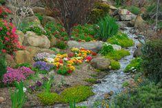 Skalka ako ozdoba záhrady - Prvá stavebná sporiteľňa