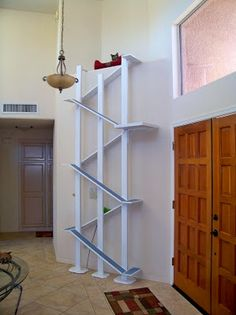 "Cat shelf ramp movings! Pinner stated: ""Awesome for those up high areas that you don't want/know what to decorate with.""#cats #CatShelves #CatTree"