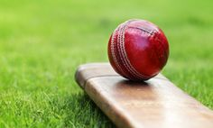 #Bollywood #Celebrities To Play #Cricket With #Parliamentmembers - #TFL #tflive #sports #sportsnews #latestupdates