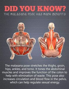 Get a Sexy Body Doing Yoga - Masalaana Pose. , Get a Sexy Body Doing Yoga - Yoga Fitness. Introducing a breakthrough program that melts away flab and reshapes your body in as little as one hour a week! Fitness Workouts, Yoga Fitness, At Home Workouts, Fitness Tips, Fitness Motivation, Physical Fitness, Mens Fitness, Health And Wellness, Health Tips