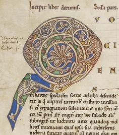 Ex ore dragones; Harley German copy of Moralia in Iob Initial D, Book Catalogue, 12th Century, Beach Mat, Ms, Medieval, German, Outdoor Blanket, Miniatures