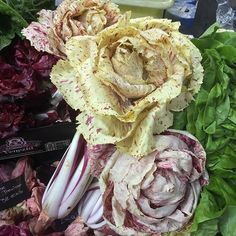 The most beautiful looking cabbage there was...  @boroughmarket #lovelondon #londonlife #boroughmarket #veg #vegetables #garden #cabbage #rose #beautiful #fiveaday