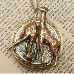 Adorable.  The Brass Steampunk Lockets are Stunningly Crafted #steampunk #victorian trendhunter.com