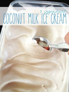 3 Ingredient Coconut Milk Ice Cream (Dairy Free, Egg Free)