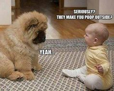 This cute pic made me laugh!