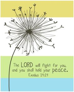 """The Lord will fight for you, and you shall hold your peace."" Exodus 14:14"