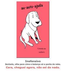entenda_o_ que_ significa_ as_ posturas_ mais_ comuns_ dos_ cachorros_sossolteiros 10