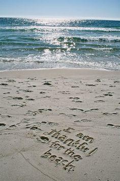 I Am For The Beach Especially On Siebert Realty People Sandbridge Virginia Va