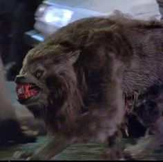 Attack in Piccadilly Square (An American Werewolf in London) Classic Horror Movies, Horror Films, Of Wolf And Man, American Werewolf In London, The Frankenstein, Horror Monsters, Vampires And Werewolves, Famous Monsters, Big Bad Wolf