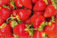 How To Grow Strawberries  http://www.amazon.com/Root-Assassin-Shovel/dp/B00KAGXUT2/ref=sr_1_26?ie=UTF8&qid=1426540866&sr=8-26&keywords=shovels