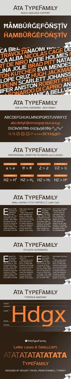 ATA TYPE FAMILY. Sans Serif Fonts. $100.00