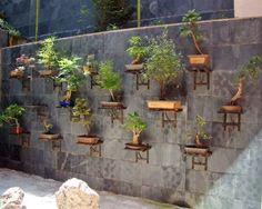 Vertical Bonsai garden by Alex Lamb
