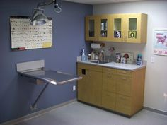 veterinary exam room design - Pesquisa Google