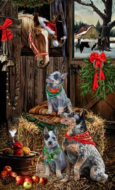"""New for 2015! Quantities Limited! Australian Cattle Dog Christmas Companions Holiday Cards are 8 1/2"""" x 5 1/2"""" and come in packages of 12 cards. One design per package. All designs include envelopes, your personal message, and choice of greeting. Select the inside greeting of your choice from the menu below.Add your custom personal message to the Comments box during checkout."""