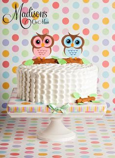 Cute Twin Owl Baby Shower Cake Photo