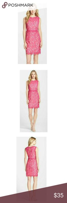 💕Nordstrom💕 💕NWOT- excellent condition Lois lace sheath dress by Darling Sold at Nordstrom Nordstrom Dresses